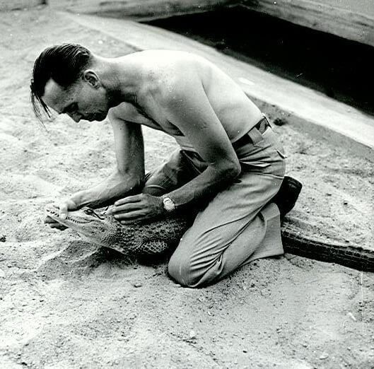 1950s-earl-gator.jpg