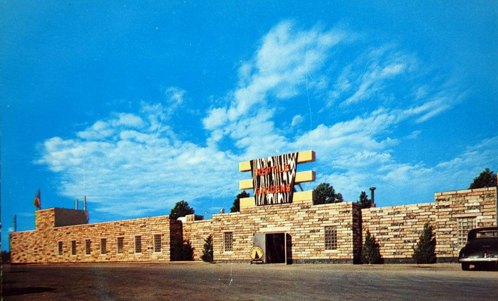 1955-building.jpg