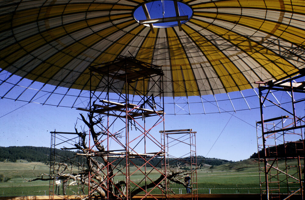 1964b-skydome-structurecolor.jpg