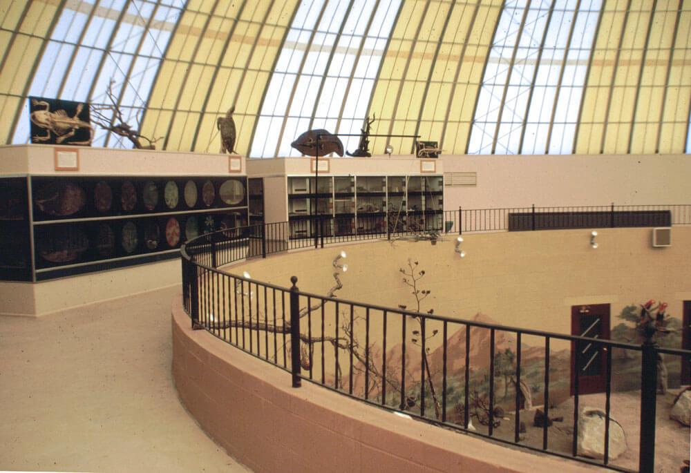 1965a-skydome-mezzanine.jpg