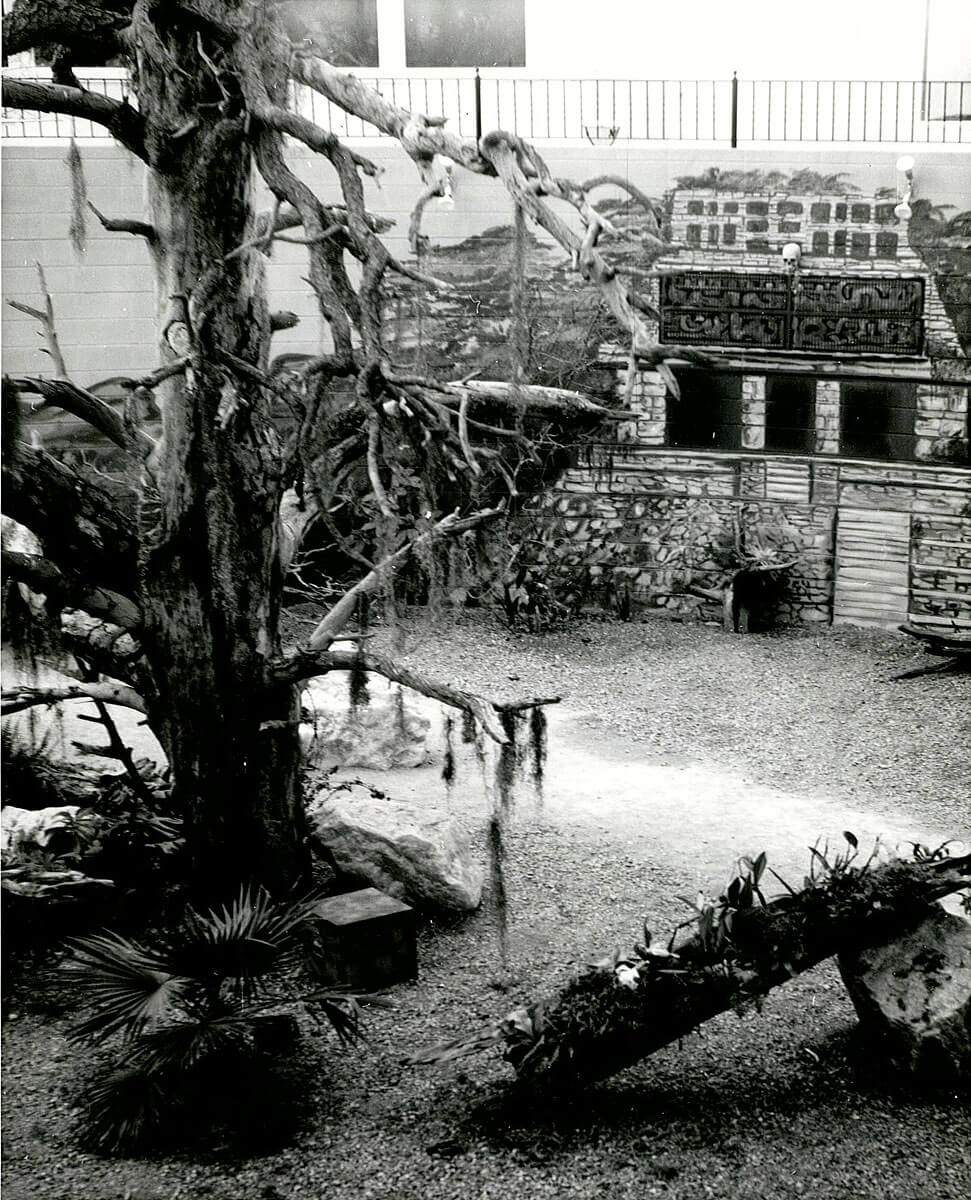 1967b-skydome.jpg
