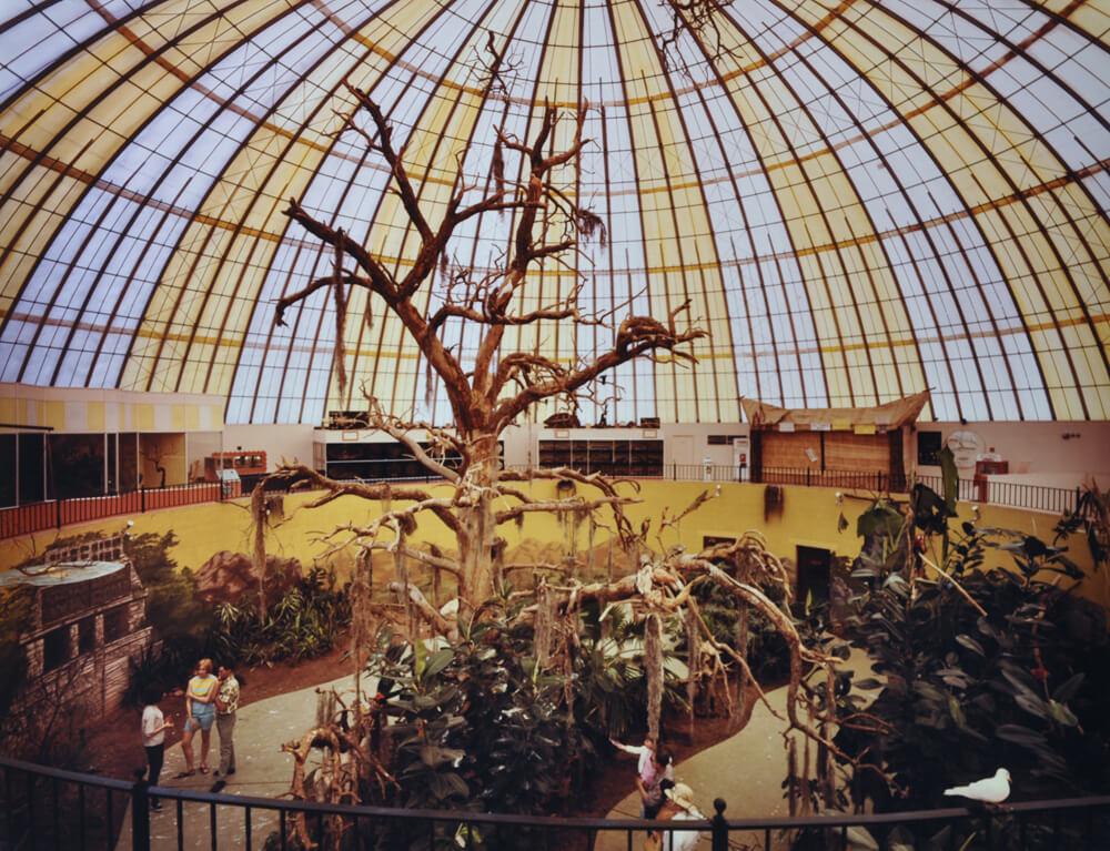 1968-skydome-safariroom.jpg