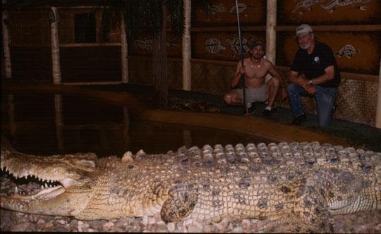 Saltwater Crocodile-- Maniac