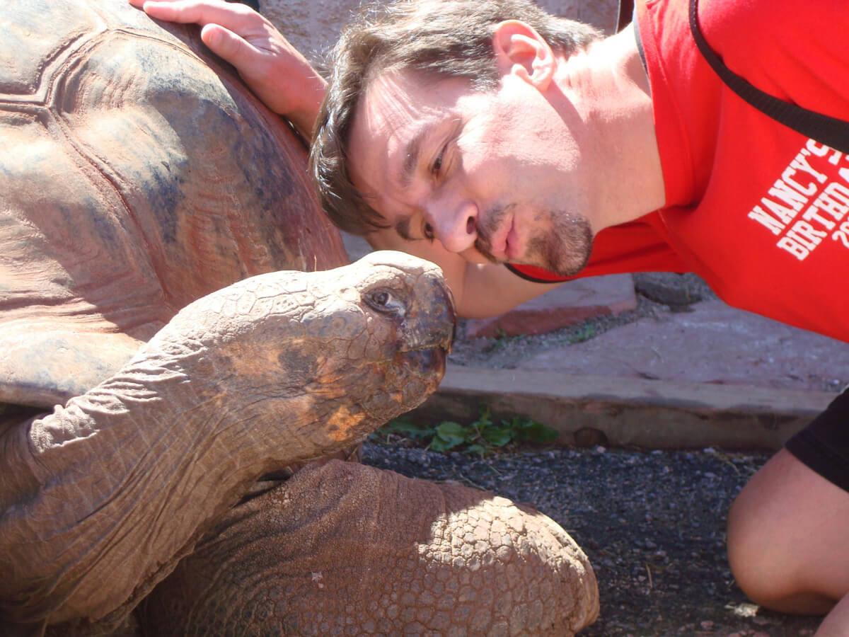 Visit the Giant Tortoises