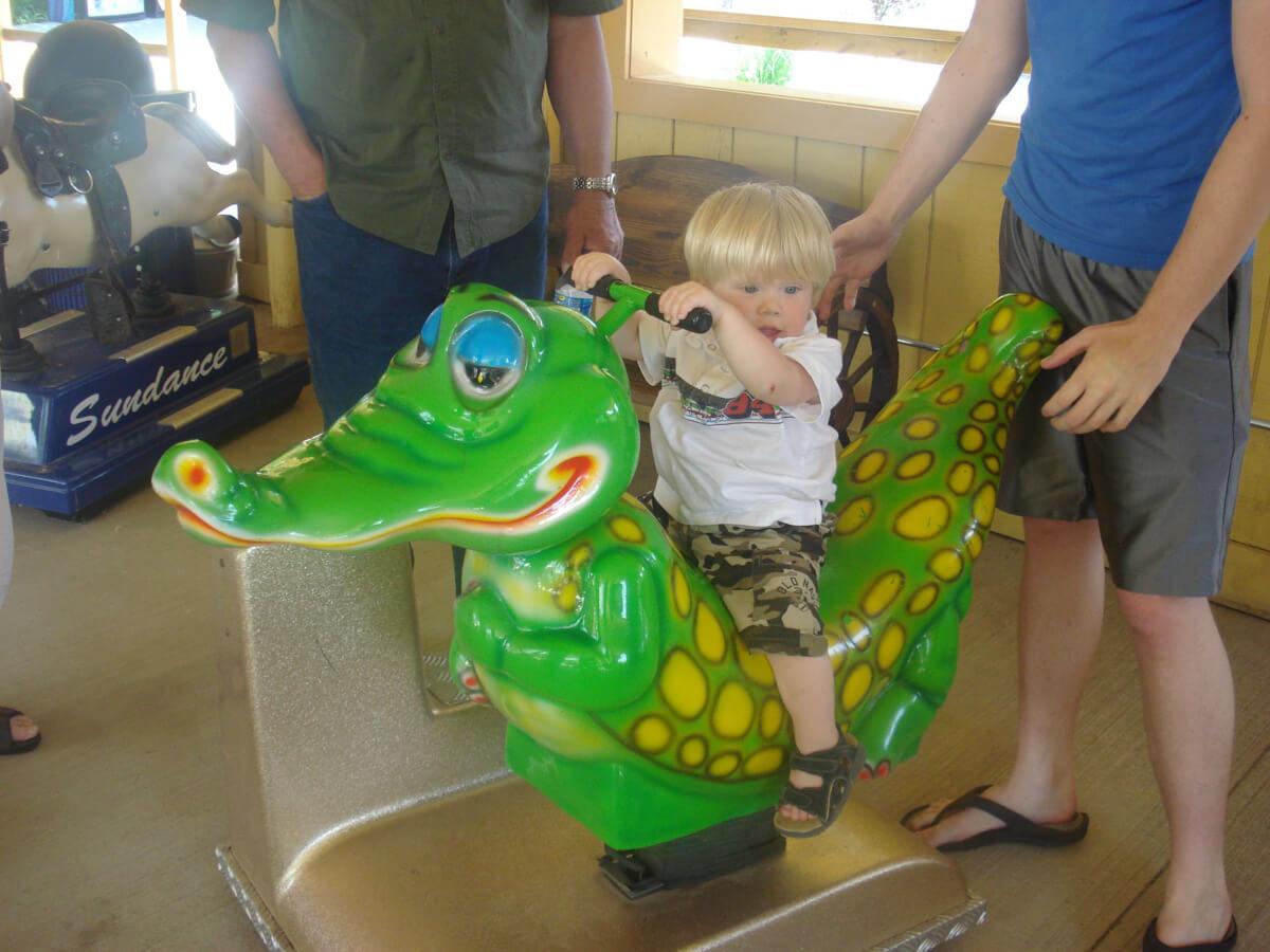 Ride an alligator