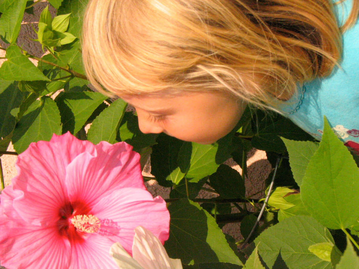 Image of a little girl smelling a flower in the walking gardens.