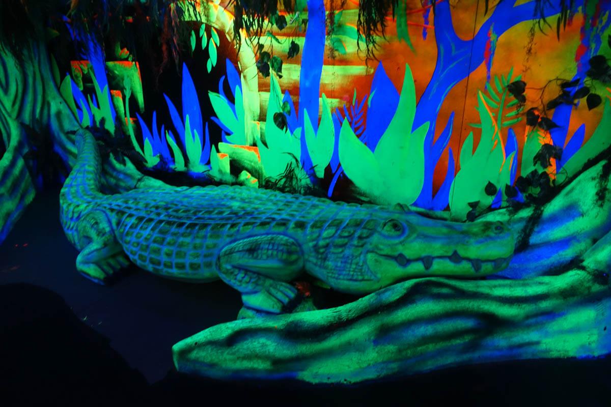 3D Safari