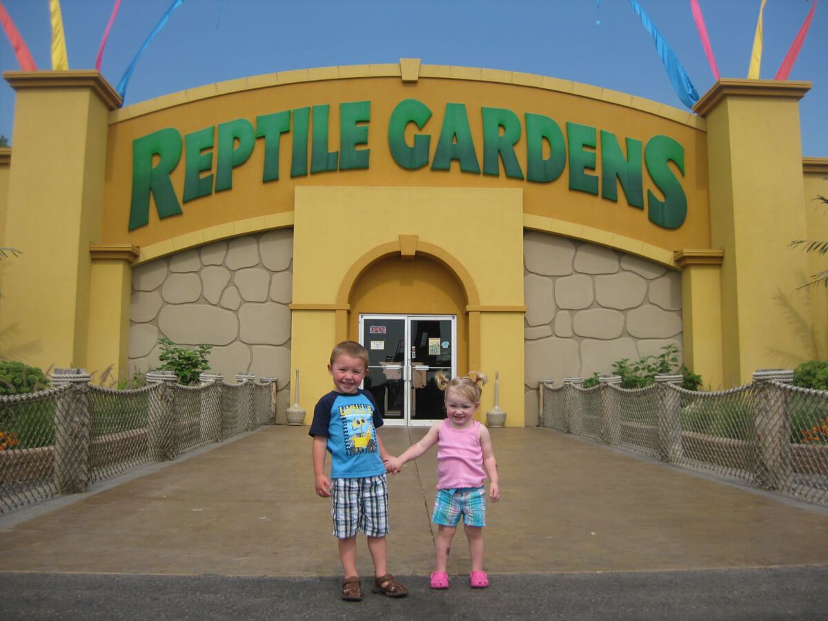 reptile gardens hours things to do in the black hills reptile