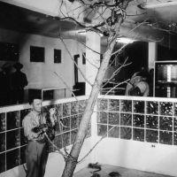 1949-snakeshow.jpg
