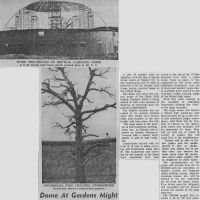 1964b-news-story.jpg