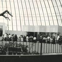 1967c-skydome.jpg