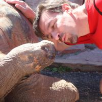 Visit the Giant Tortoises