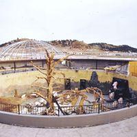 Post-fire Sky Dome