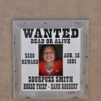 Wanted at Spring Creek Gulch
